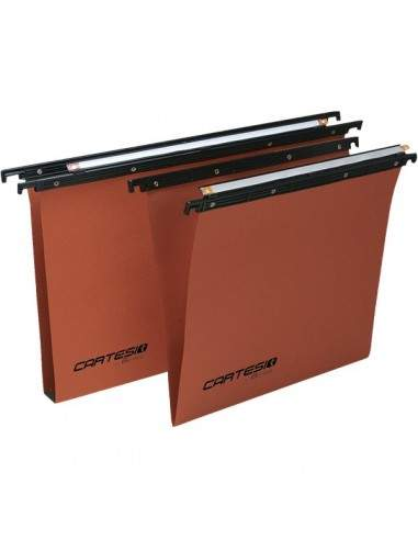 Cartelle sospese Linea Cartesio Bertesi - per armadio - 33 cm - U3 - 114 F Beta 3 -B2 (conf.50)