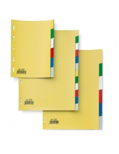 Separatore 12 Tasti Colorati 21X29,7 Ppl Record Sa412N Sei - 580023