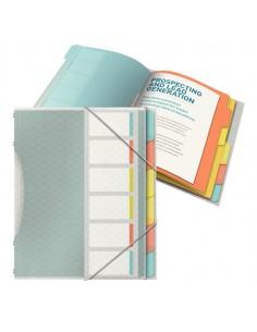 Libro Monitore Con 6 Divisori Multicolore Colour'Ice Esselte - 626255