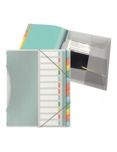 Libro Monitore Con 12 Divisori Multicolore Colour'Ice Esselte - 626256