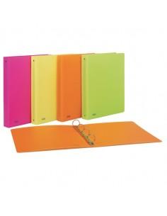Raccoglitore Ppl 22X30Mm 4R Dorso 30 Colori Assortiti Neon Favorit - 400090369 - (conf. 10)