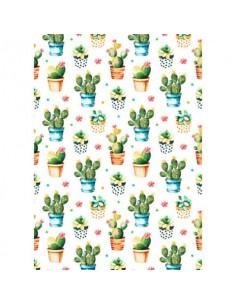 Carta da regalo Kartos Everyday 70x100 cm mod. Vasi di Piante Grasse Conf. 10 fogli - 18866600B10